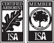 ISA Member and Certified Arborist